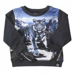 3W17A402 Elvis Blue Mountains bluse Tiger fra MOLO AW17
