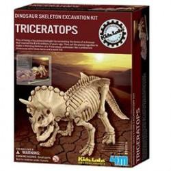 4M triceratops-skelet