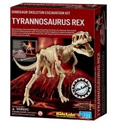 4M tyrannosaurus rex-skelet