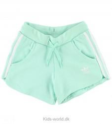 adidas Originals Shorts - Mint m. Striber