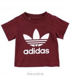 adidas Originals T-shirt - Vinrød m. Logo