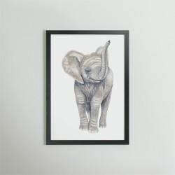 Akvarel tryk - Elefant