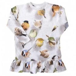 Caras kjole junior pige fra MOLO Bouncing Birds 2W17E215