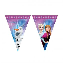 Disney Frost Party Banner