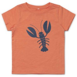 Friends t-shirt - Orange med hummer
