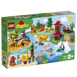 LEGO DUPLO Verdens dyr
