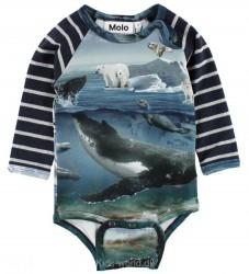 Molo Body l/æ - Floyd - Arctic Landscape