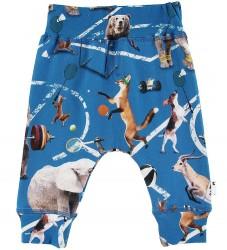 Molo Bukser - Sammy - Athletic Animals