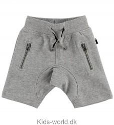 Molo Shorts - Ashtonshort - Grey Melange