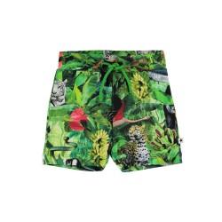 Molo Simroy shorts - 6242