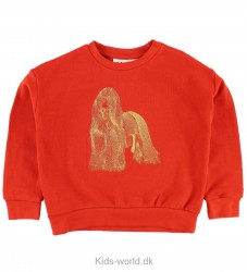 Molo Sweatshirt - Maila - Hundens År
