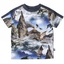 Rishi MOLO T-shirt dreng Dragon Island 1W17A225
