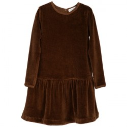 Serendipity Caramel Velour Dress